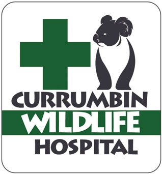 Currumbin Wildlife Hospital