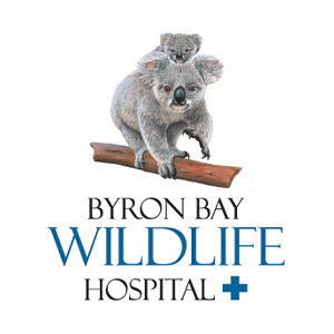 Byron Bay Wildlife Hospital