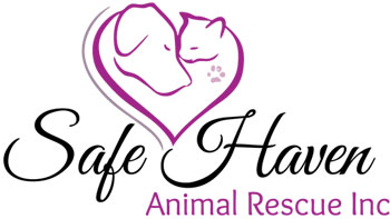 Safe Haven Animal Rescue