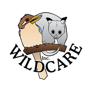 Wildcare Inc